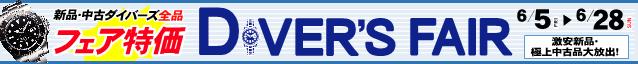 ダイバーズフェア:ブログバナー